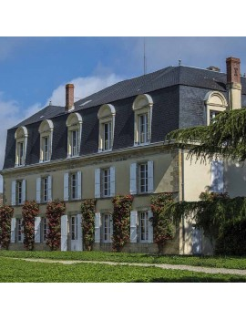 Petit Guiraud 2014, Château Guiraud
