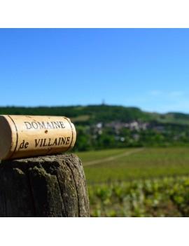 Domaine de Villaine vignoble