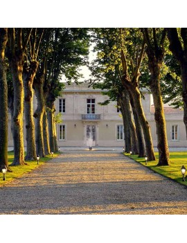 Château Haut Breton Larigaudière domaine