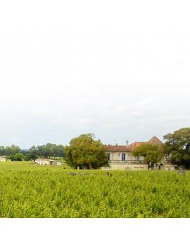 Château Gombaude Guillot domaine