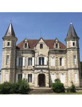 Château Tour Blanc domaine
