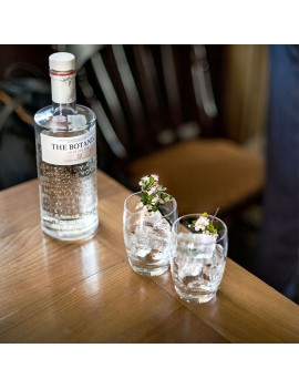 Gin The Botanist cocktail