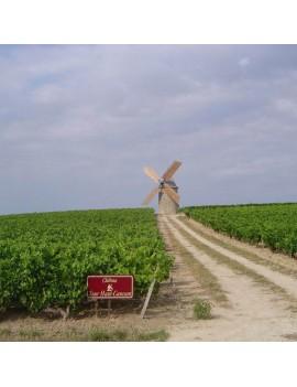 Château Tour Haut Caussan vignoble et moulin
