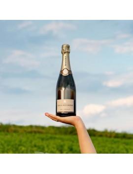 Champagne Louis Roederer Brut Premier bouteille vignoble