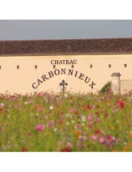Château Carbonnieux domaine