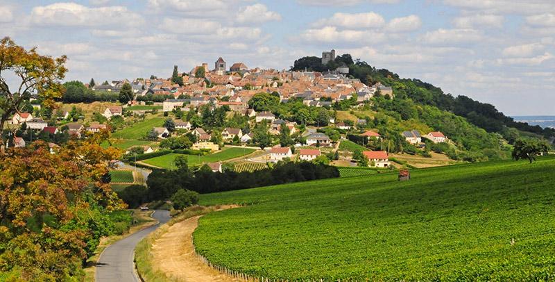 Sancerre village Sauvignon blanc